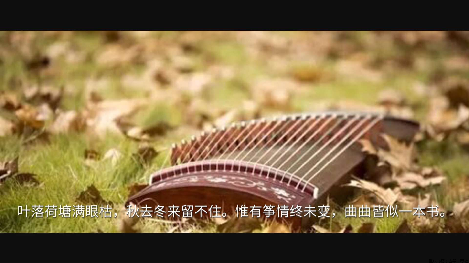 九德琴社原创《筝情终未变》